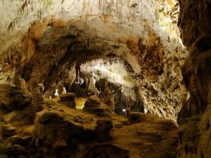 Slovenie – De Postojna grotten