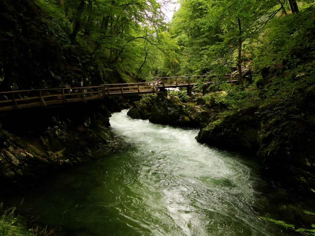 Slovenie – De Vintgarkloof