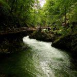 Natuur in Slovenië: grotten, meren, watervallen en meer!