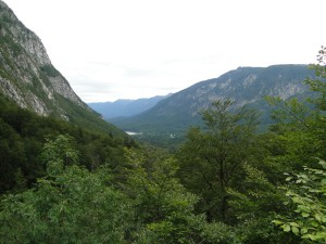 Slovenie - In de verte het meer van Bohinj