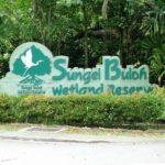Natuur in Singapore: Het Sungei Buloh Wetland Reserve