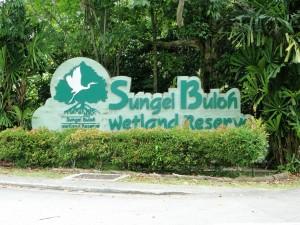 Singapore - Sungei Buloh Wetland Reserve