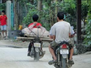 Verkeer Vietnam (5)