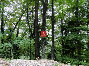 Sarajevo - Warning signs Mines (2)