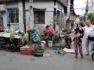 Shanghai contrasten (1)