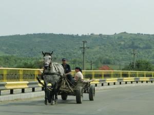 Roemenie - Paard en Wagen