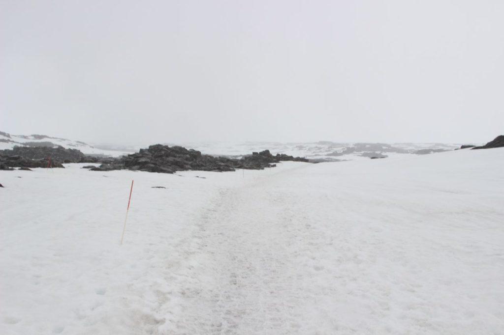 IJsland - Op weg naar de Dettifoss