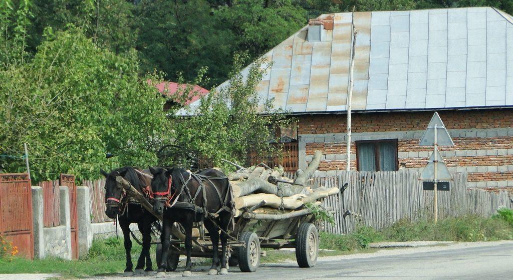 roemenie-paard-en-wagen